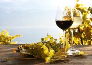 Rotwein-im-Herbst